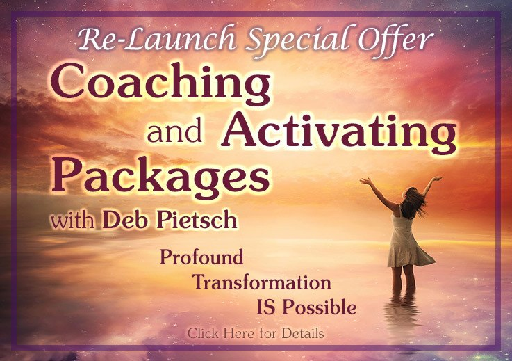 Transcend The Matrix Coaching with Deb Pietsch & Scott Bartle TTM