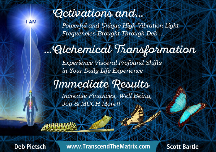 Transcend The Matrix Scott Bartle Deb Pietsch Activations and Alchemy